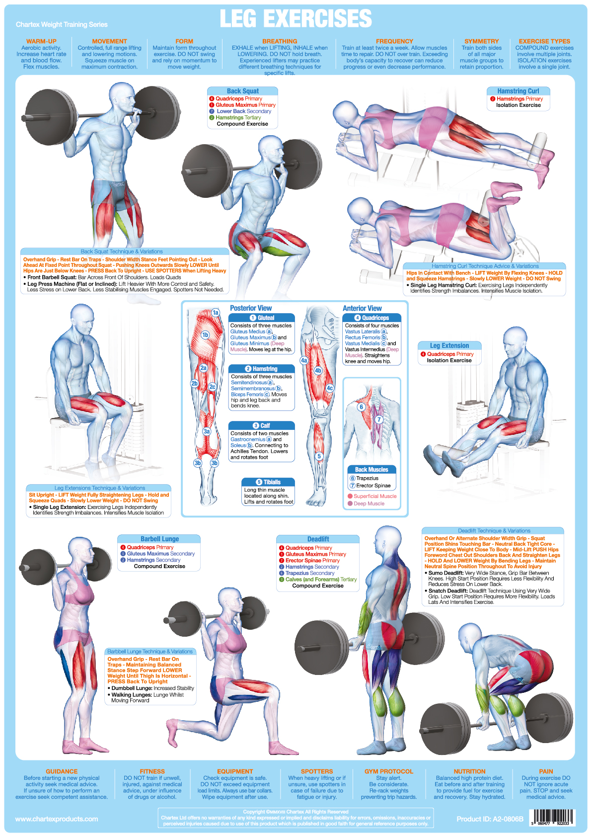 Jan Roscoe Publications Categories Posters Wall Charts Leg Muscles Inhalation And Exhalation Diagram Inhalingdiagram Weight Training A1 Chart