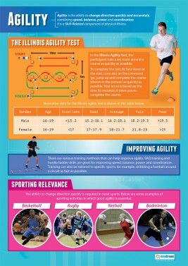 Agility - laminated A1 poster