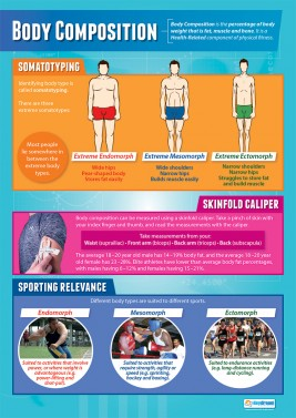 Body Composition - laminated A1 poster
