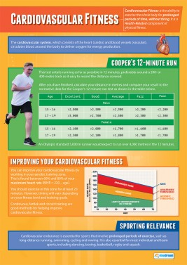 Cardiovascular Fitness - Laminated A1 Poster