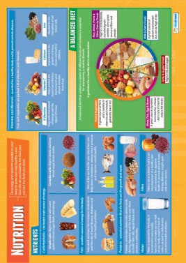 Nutrition - laminated A1 poster