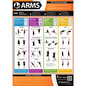 Arms A1 Laminated Weight Training Poster (840mm x 594mm)