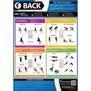 Back A1 Laminated Weight Training Poster (840mm x 594mm)