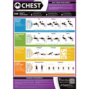 Chest A1 Laminated Weight Training Poster (840mm x 594mm)
