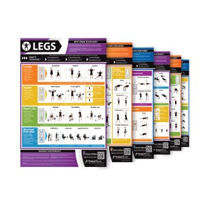 Set of 6 Exercise A1 laminated Weight training posters - shoulders, back, chest, arms, core and legs (840mm x 594mm)