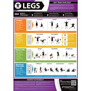 Legs A1 Laminated Weight Training Poster (840mm X 595mm)