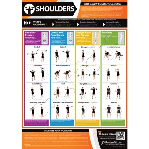 Shoulders A1 Laminated Weight Training Poster (840mm x 594mm)